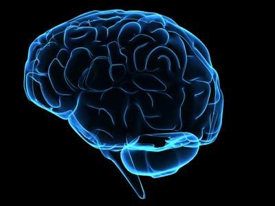 sumber gambar: http://bit.ly/iTGLZs